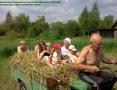 Космачева - сайт