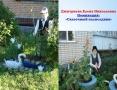 Дмитриева палисадник-сайт 11