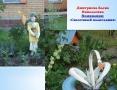 Дмитриева палисадник-сайт 22