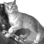 кот в Сказкотерапию