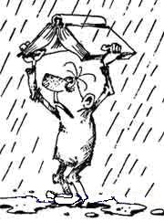 с книгой под дождем